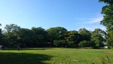 としまえん閉園の理由となった都市計画公園「練馬城址公園」とは?